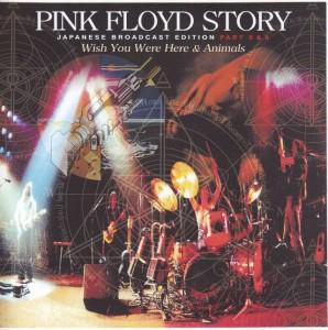 pinkfly-story-japanese
