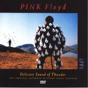 pinkfly-delicate-thunder
