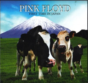 pinkfly-first-time-japan