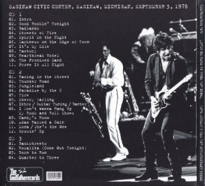 Brucespringsteen-rock-roll-here-to-stay1