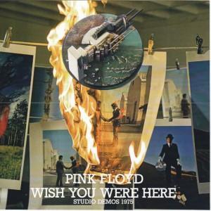 pinkfly-wish-studio-demos