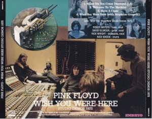 pinkfly-wish-studio-demos1