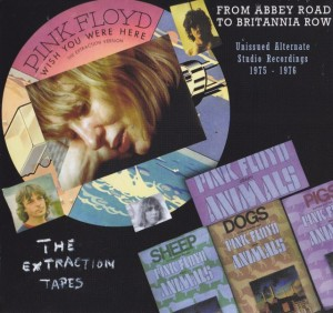 pinkfly-from-abbey-road1