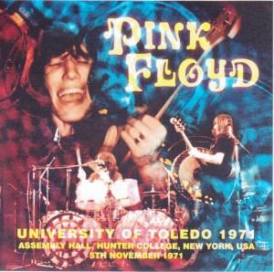 pinkfly-university-of-toledo1