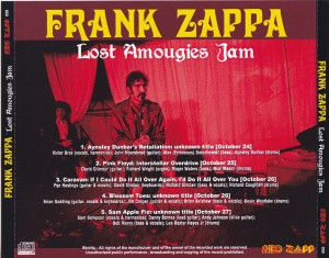 frankzap-lost-amougies-jam2