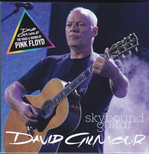 davidgilmour-skybound-guitar1