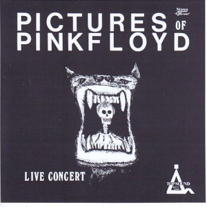 pinkfly-picture-of-pf-live-concert1